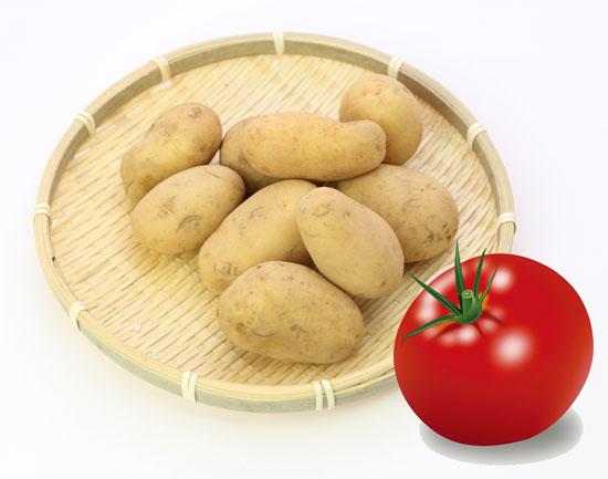 じゃがいもwithトマト
