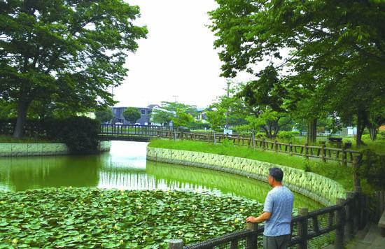岩槻 和土住宅公園の大池