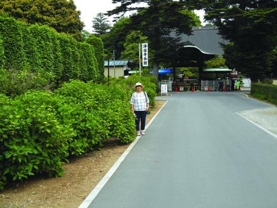 浄国寺参道