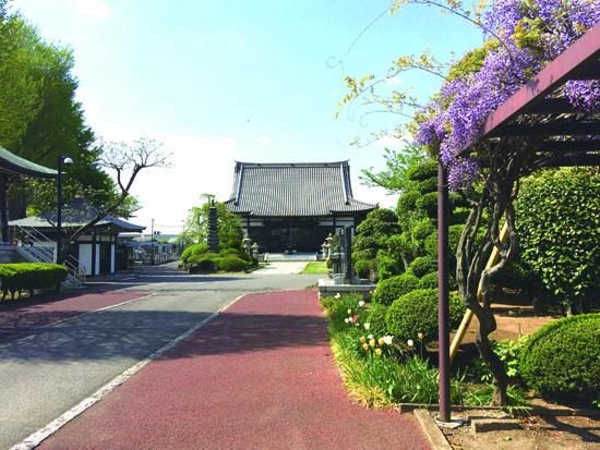 大圓寺の本堂