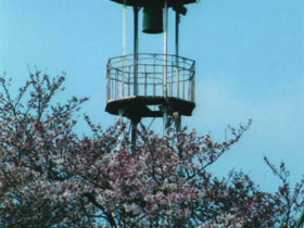 花と柳東岩槻南平野公園